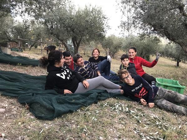 Degustazione olio Umbria - Raccolta olive olio biologico