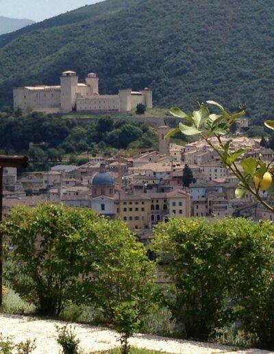 vista della Rocca Albornoziana dall'Agriturismo Spoleto Collerisana
